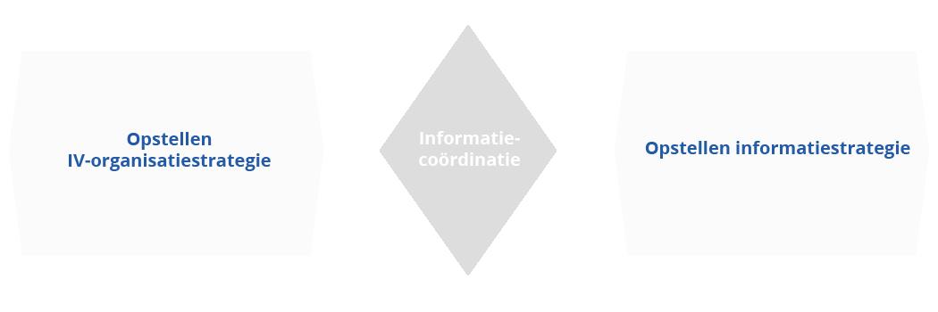BiSL verbindende processen richtinggevend niveau